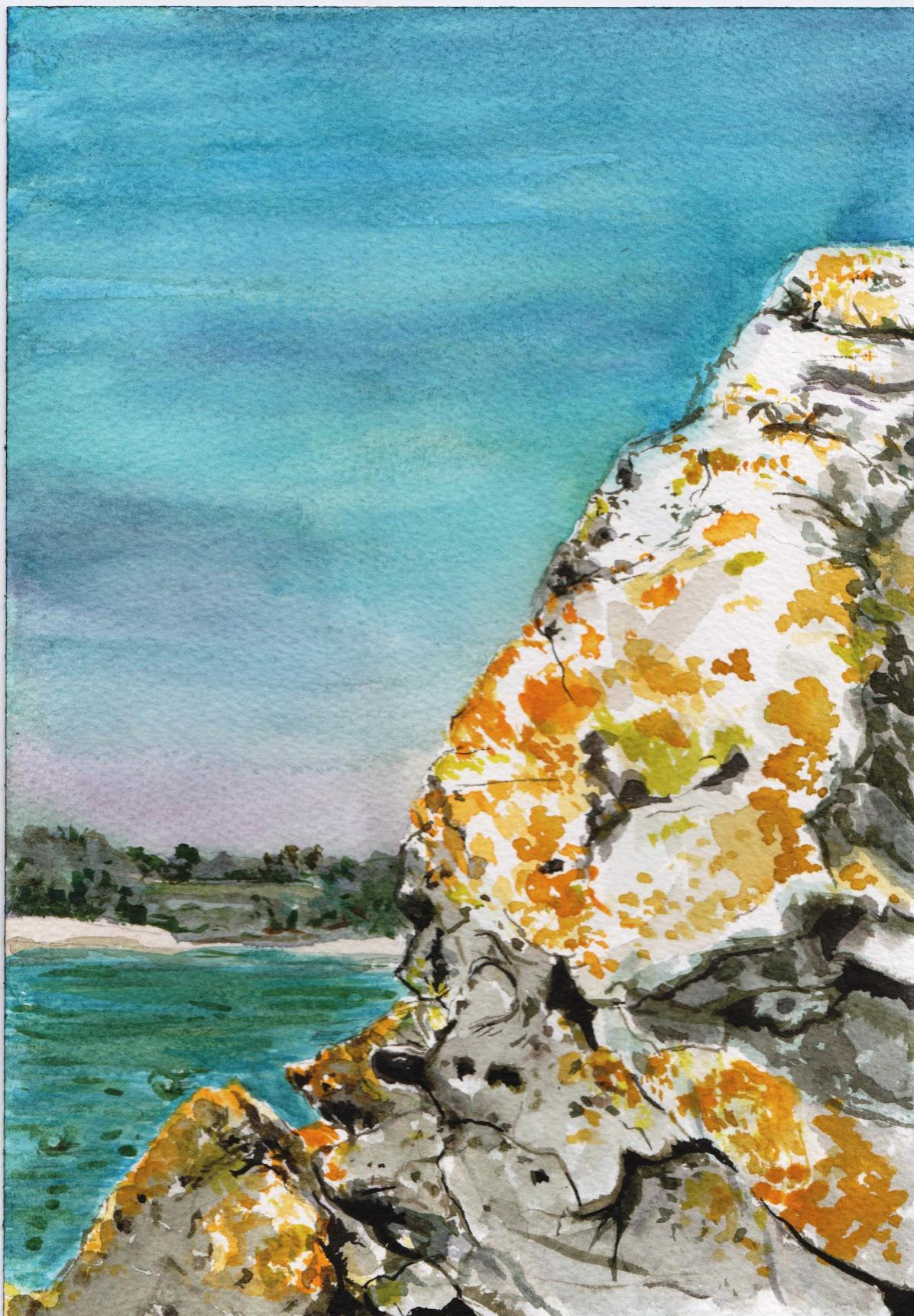 """Rock Lichen in Saint Cast"", watercolour on paper, 16x12"", Charlie Kirkham 2015."